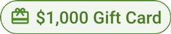 Visa Gift Card - 1000